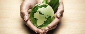 mondo-green-min